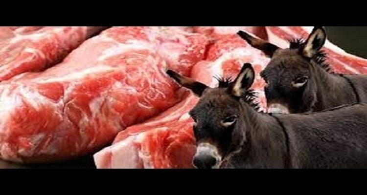 لماذا حرم الله أكل لحم الحمار