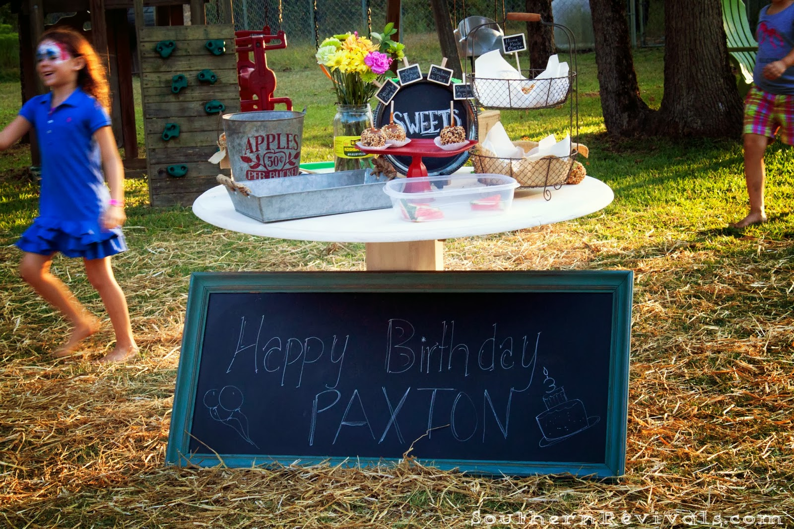 our country fair birthday party southern revivals