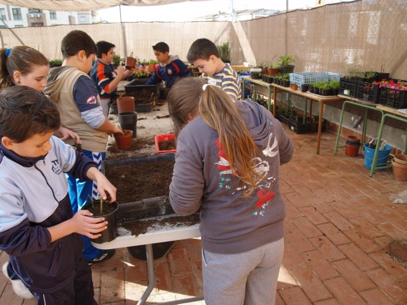 Actuaciones medioambientales en un entorno urbano el vivero for Actividades de un vivero