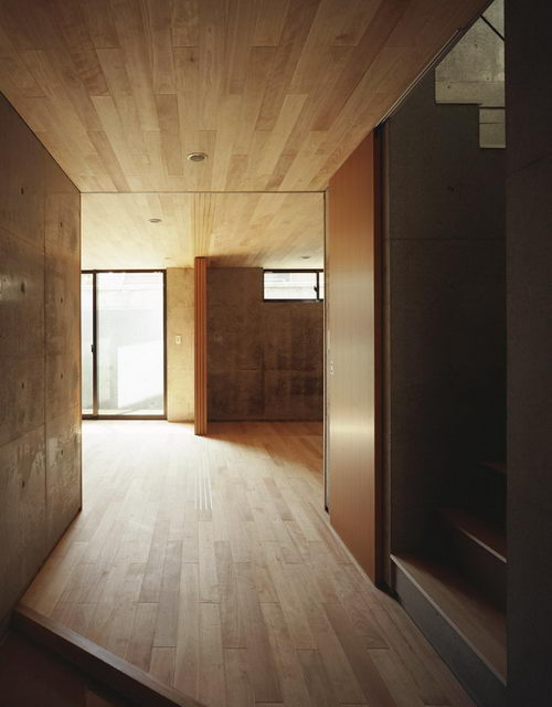 Bino the Minimalist House Design by Apollo