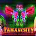 Tamanchey (2014) Hindi Movie Watch Online Cloudy