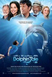 I Love Dolphin Box Front
