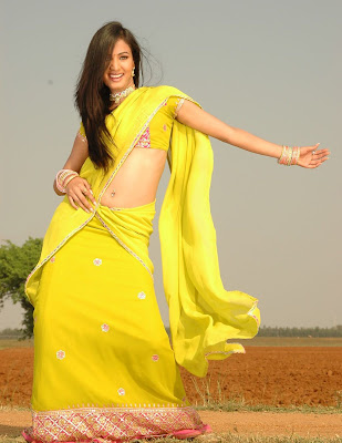 Actress Sonal Chauhan in Half Saree photos