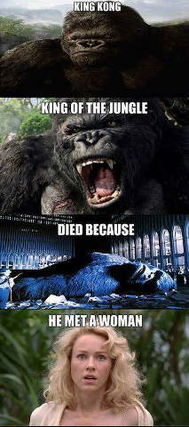 King kong died because he...