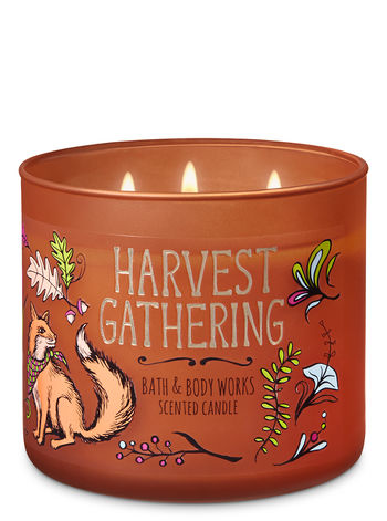 Candle of the Day