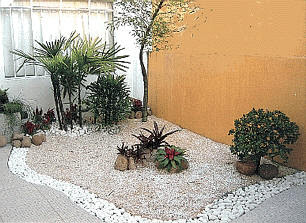 Jardim simples, pequeno