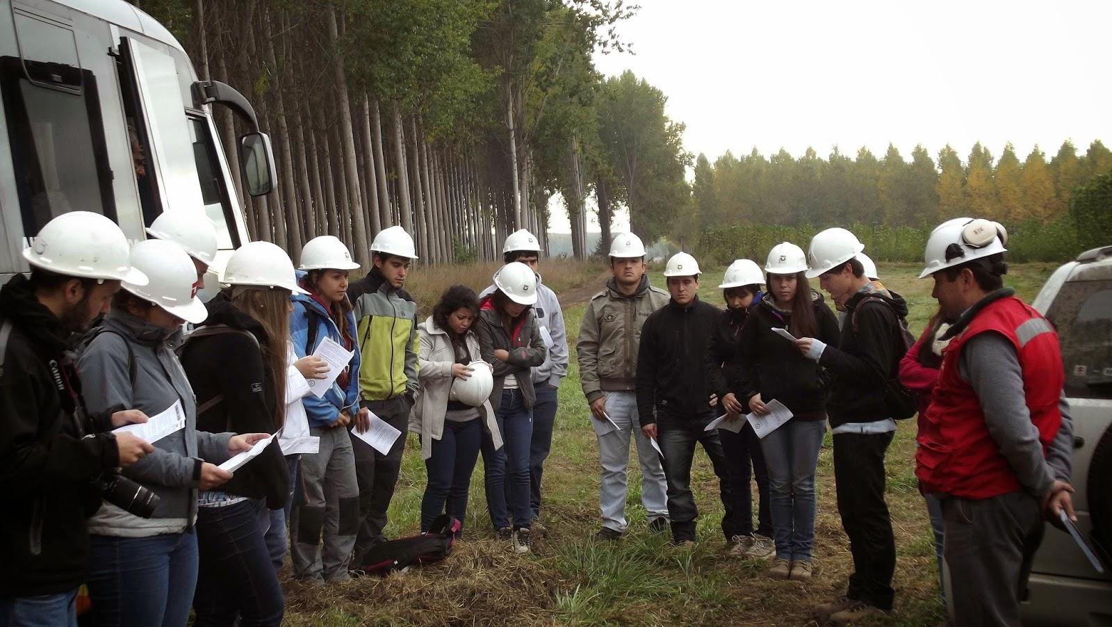 Compa a agr cola y forestal el lamo ltda mayo 2014 for Viveros en talca