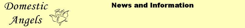 Domestic Angels (UK) News