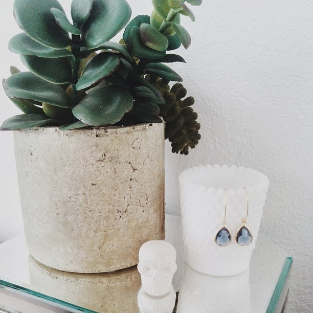 skull, succulent, milk glass, mirror box, Target