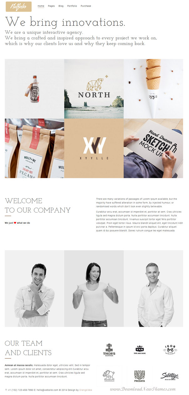 Premium Portfolio and Agency WP Theme