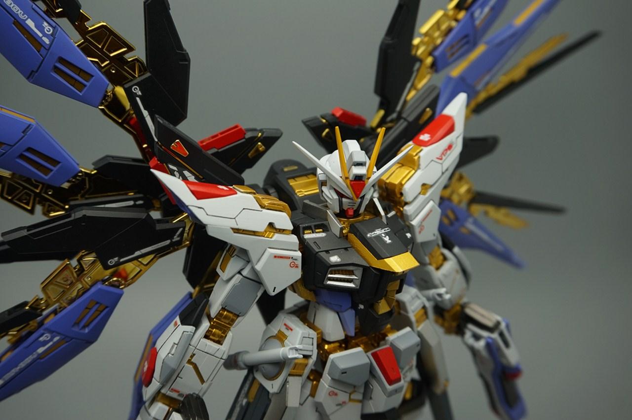 Gundam Family: RG 1/144 ZGMF-X20A Strike Freedom Gundam ...