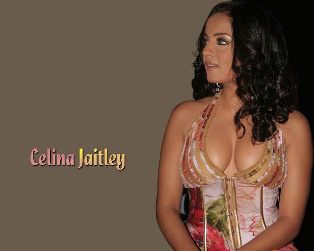 Celina Jaitley Hd Wallpapers