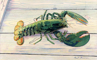 """Live Lobster - Watercolor - 13"""" x 20"""""""