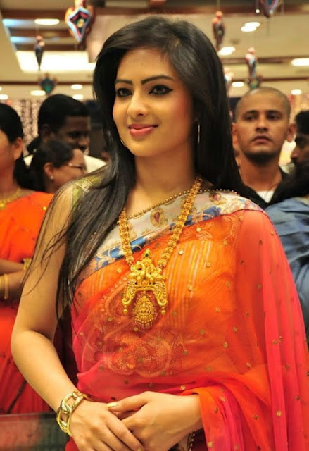 Nikesha Patel in Saree HD Wallpapers
