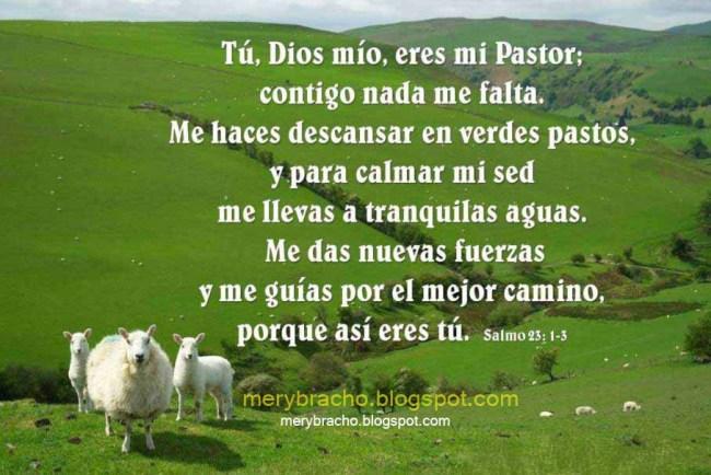Postal Dios Tú eres mi Buen Pastor | Entre Poemas y Vivencias
