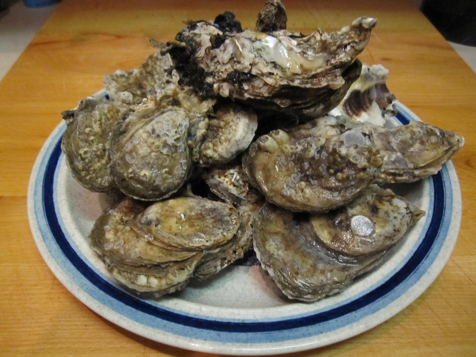 The Giggling Chef: Grilled Oysters
