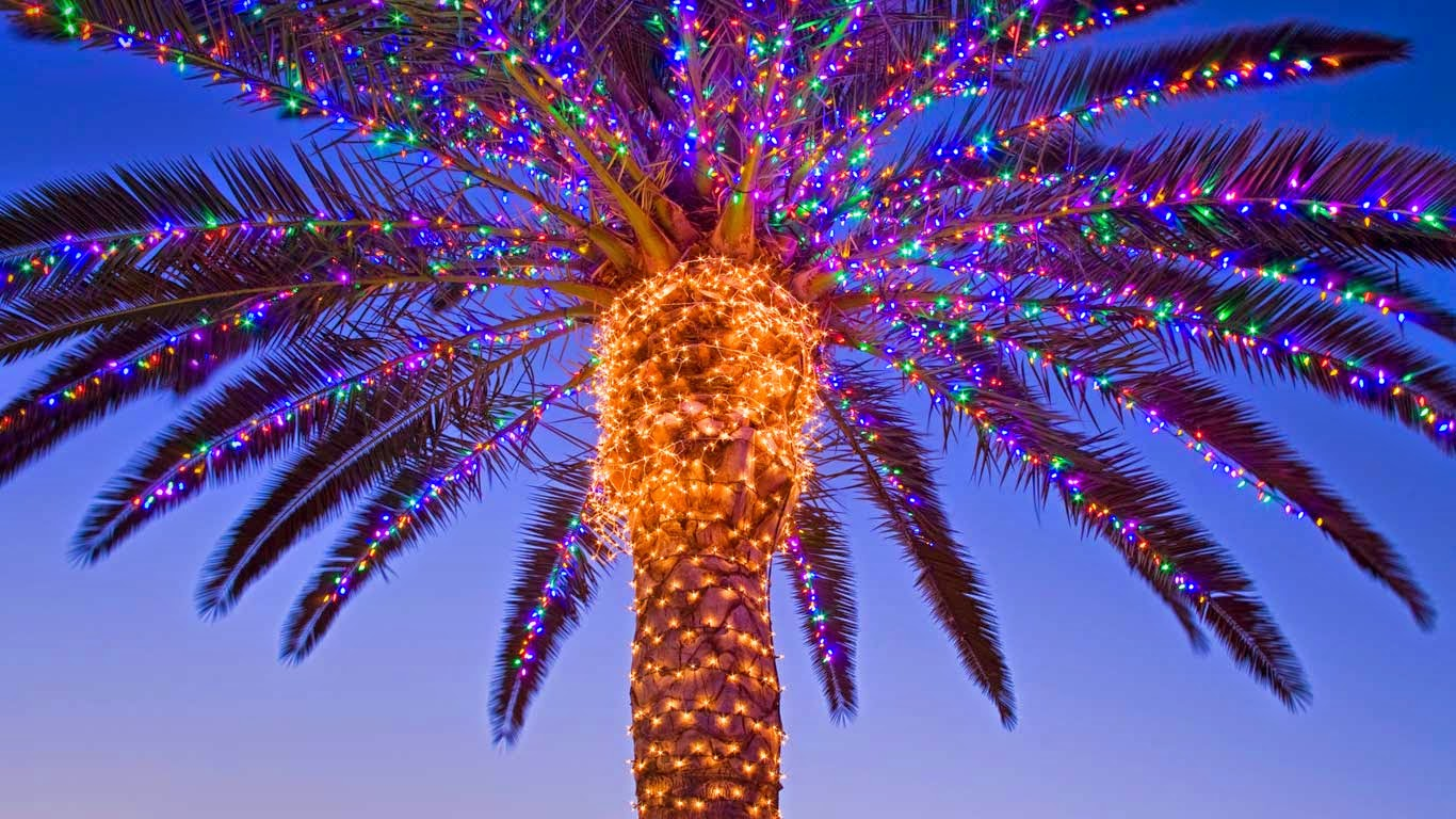 5 things all southern californians know to be true about christmas