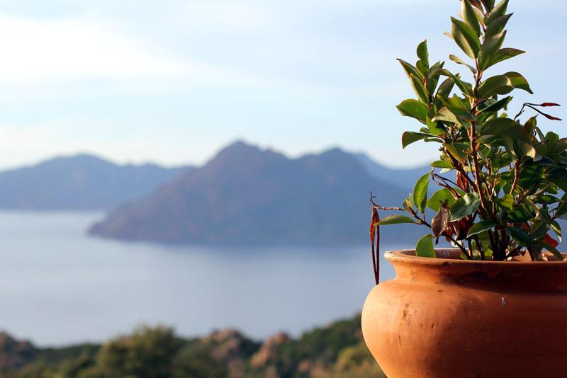 restaurant hotel roches rouges Piana Corse terrasse vue sur mer coucher du soleil