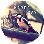 Интересное в блоге:<br>Тематический день