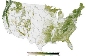 USA Biomass &amp; Carbon Storage