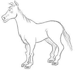Cartoon Horse Sketches