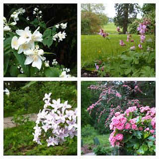 Compton+Verney+Flowers