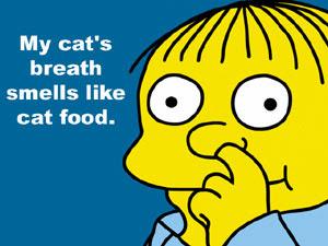 My Cat S Breath Smells Like Cat Food