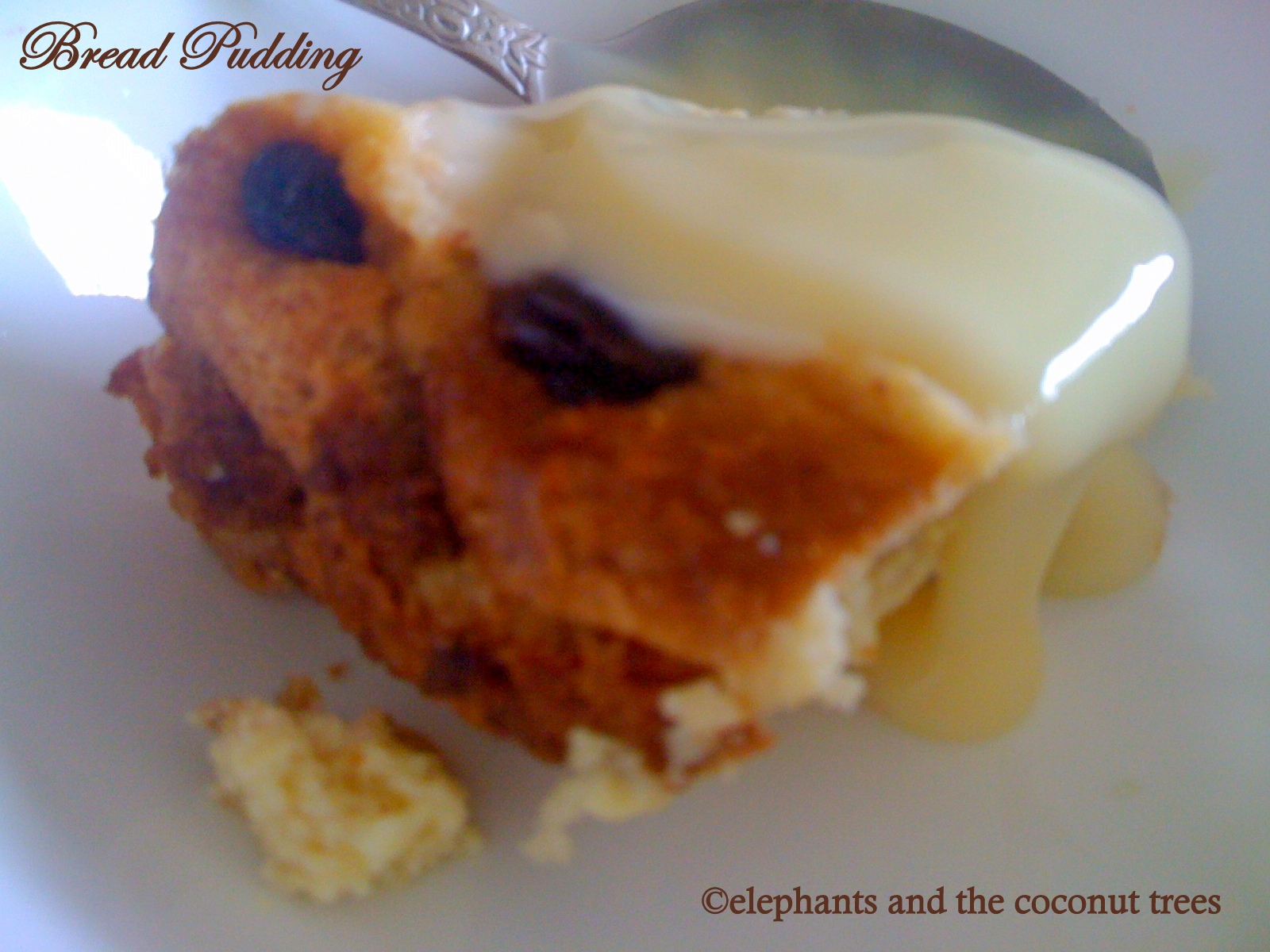 ... : Traditional British bread and butter pudding / Bread pudding (easy