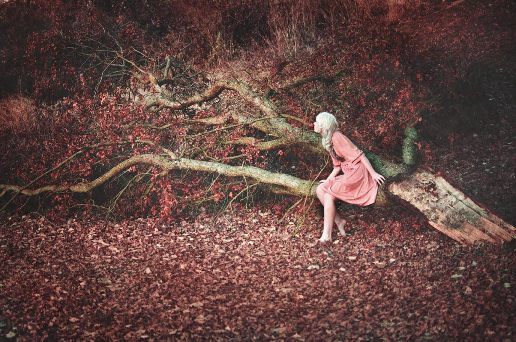©Brandi Douglas - Fotografía | Photography