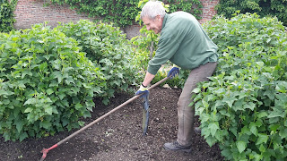 There are lots of volunteer gardeners at Beningbrough Hall