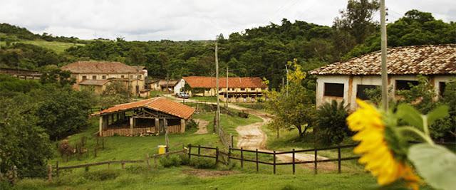 Fazenda, Quinta, Farm