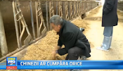 Chinese what to buy farms in Romania