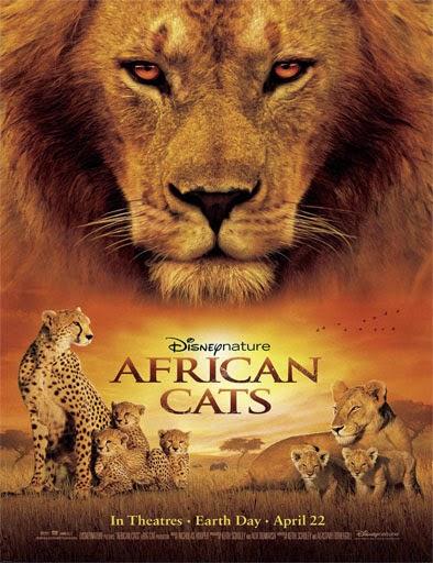 Ver Felinos de África (African Cats) (2011) Online
