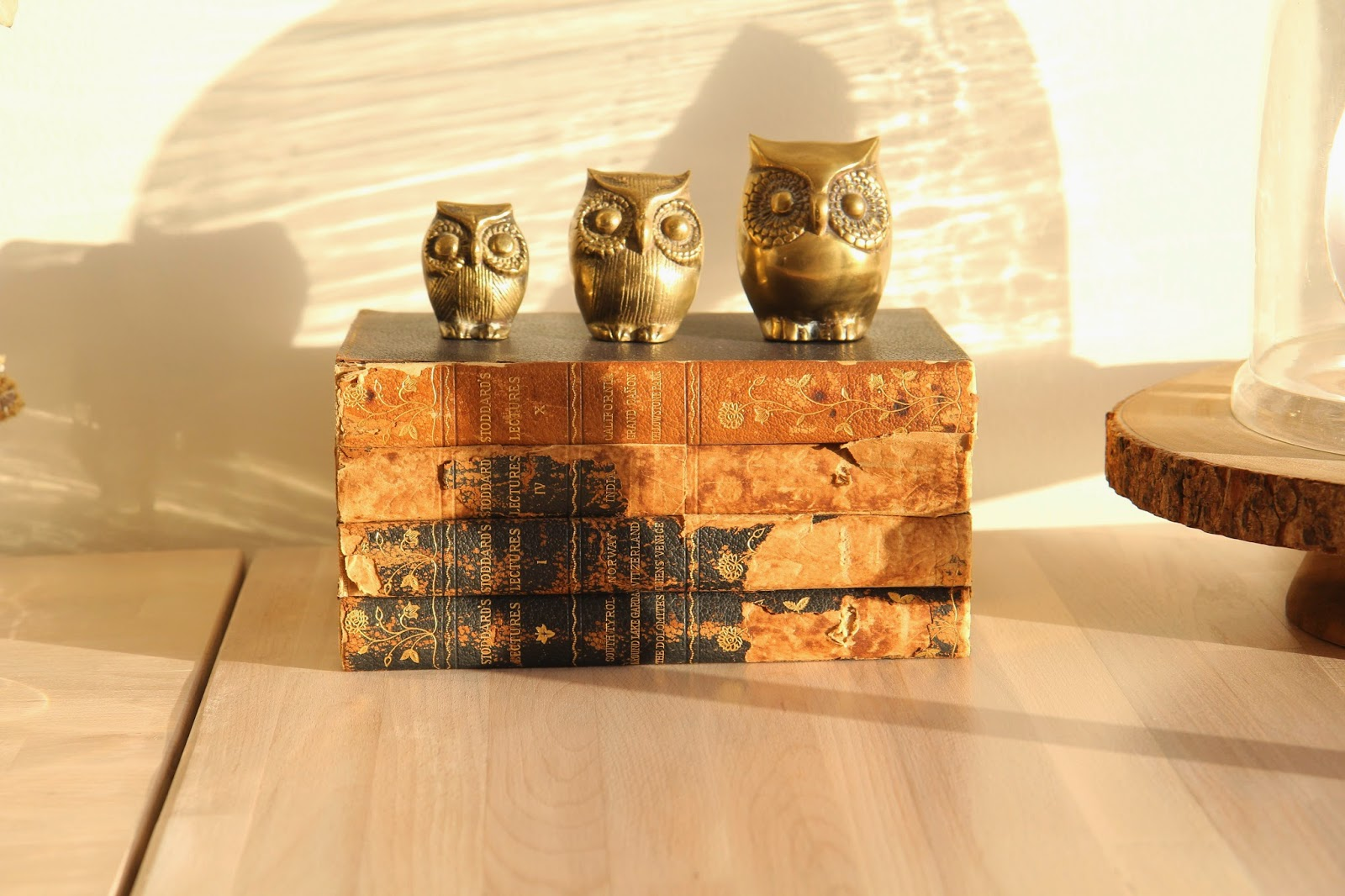 Wise Owls and Old Books for our Office; Designing Our Home Office; Nora's Nest