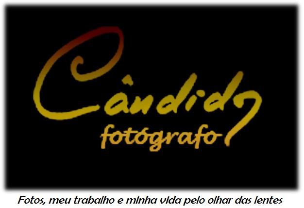 Fotografo Candido