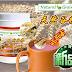 【丰富营养餐】 新升级版 天然谷粮 Natural Grain + (澳洲配方)