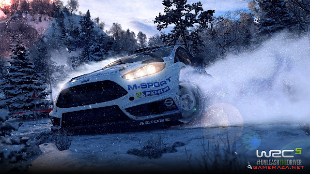 WRC 5 FIA World Rally Championship Gameplay Screenshot 1