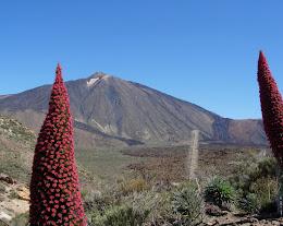 TEIDE-Cañadas del Teide