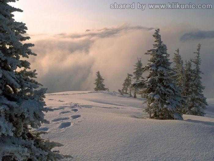 http://4.bp.blogspot.com/-0ZadeSqHn6I/TXLdzwlYNHI/AAAAAAAAP6M/G9tz2uVXEmM/s1600/winter_05.jpg
