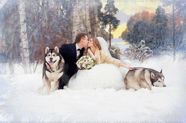 в лесу с собаками фотосессия