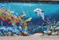 Graffiti Delfines