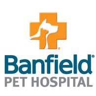 Banfield Pet Hospital Externships