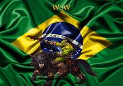 Com a chegada de WoW no Brasil, vem surgindo muitas dúvidas e especulações, . (wow brasil)