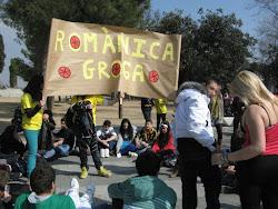 LA ROMÀNICA ES MOU. DIMARTS GROC: 28.02.2012