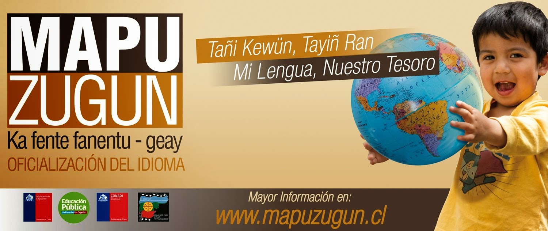 Por la oficialización del mapuzugun