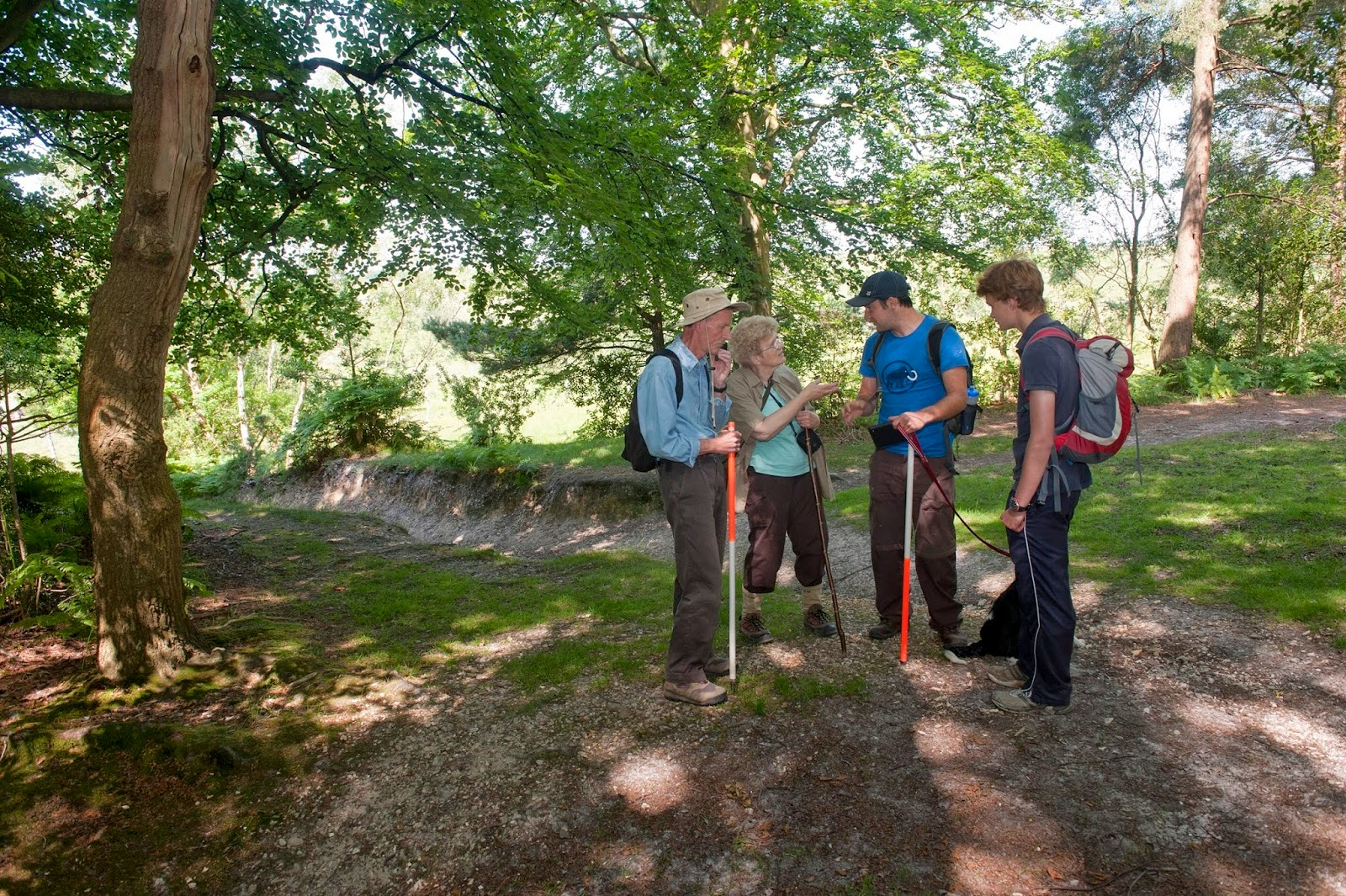 Volunteers in the New Forest Heritage on My Doorstep project