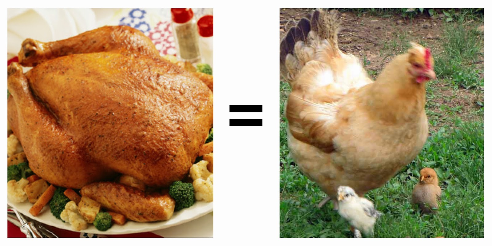 My Picky Eaters: Chicken = Chicken ~ thequirkyconfessions.com