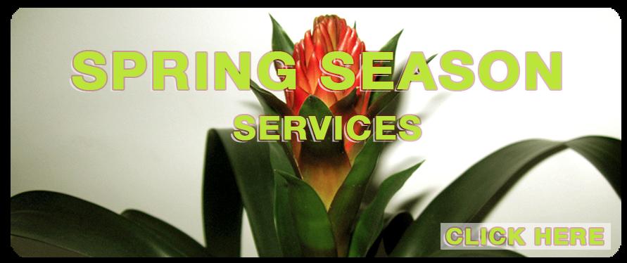 http://inspiremedspa.blogspot.com/2014/03/spring-season-recommended-services.html