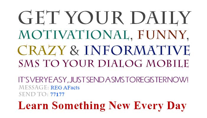 Get your Daily Motivational, Funny, Crazy and Informative SMS to your Dialog Mobile