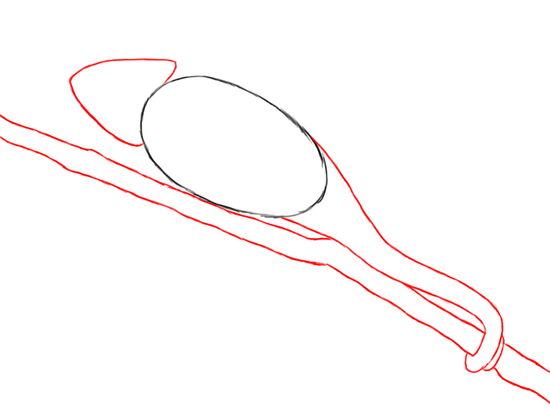 Chameleon drawing - photo#10